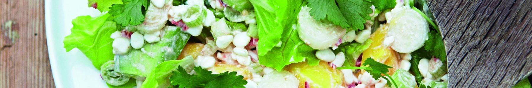 Hurtig + Salater + Forretter + Efterår