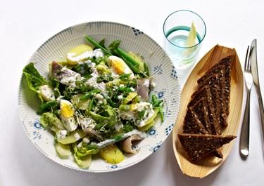 Salat med kartofler og marinerede sild
