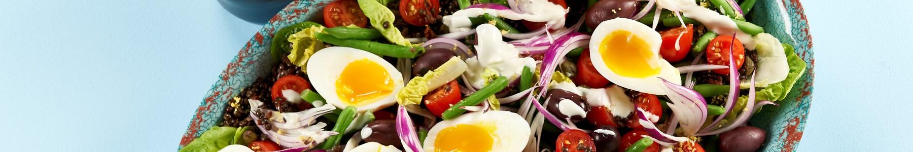 Hurtig + Salater + Hvidløg + Efterår
